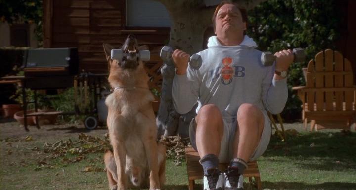 К-911 собачья работа 2 1999  в