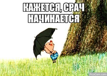 http://img.playground.ru/images/4/8/69231473772682.jpg