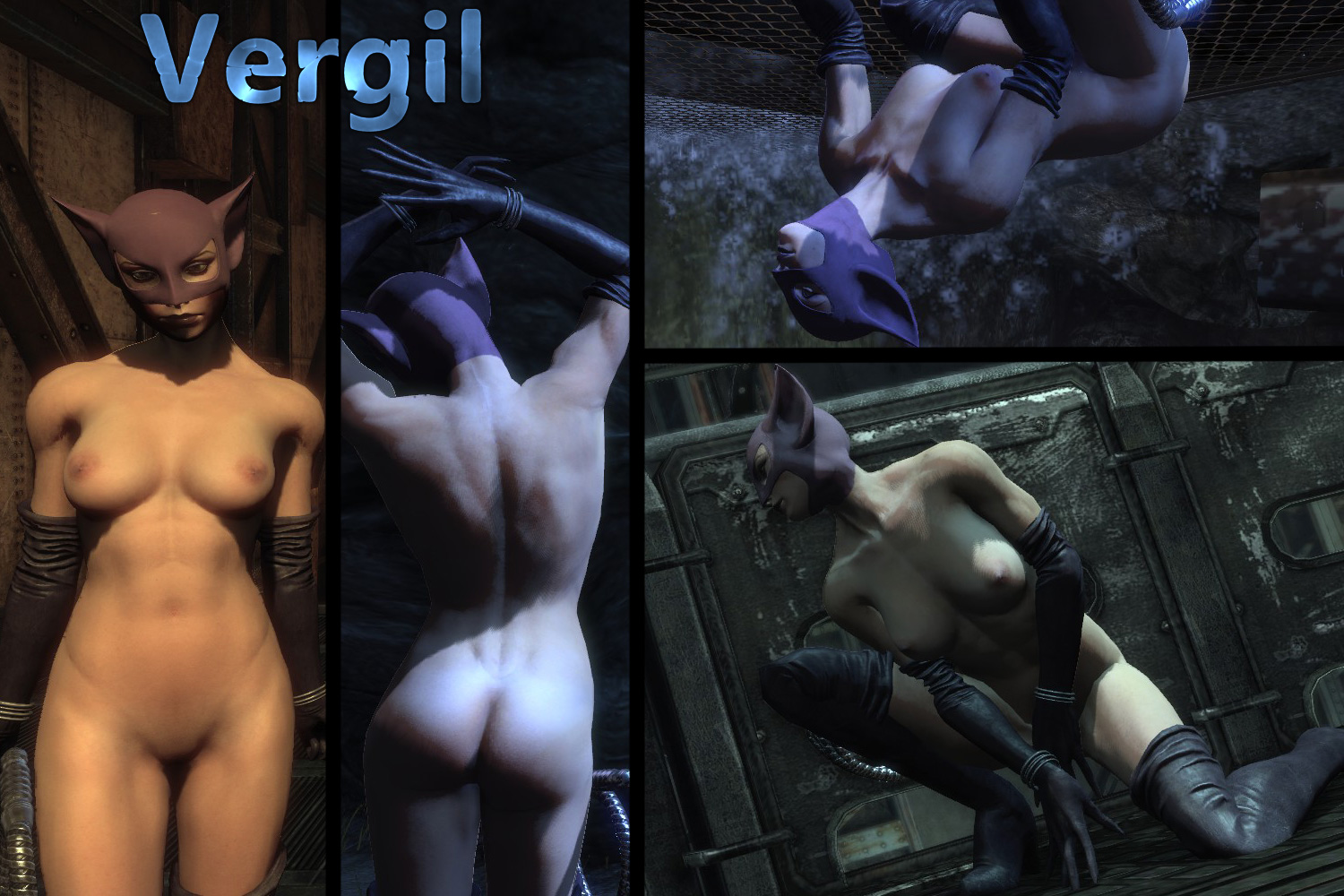 Arkham city nude mod sexy picture