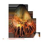 Смотреть фото артефакта обруч медузы